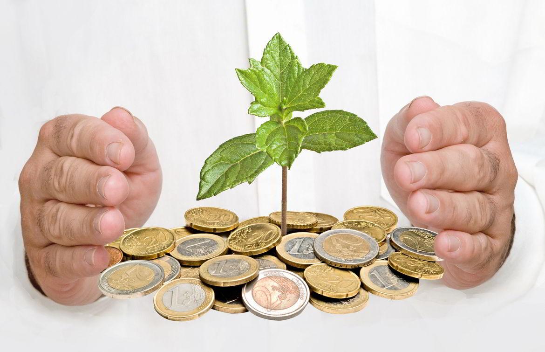 В какой бизнес вложить деньги, чем заниматься выгоднее?