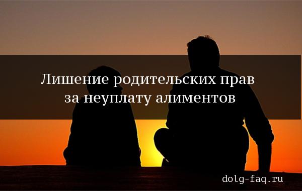 Лишение родительских прав отца за неуплату алиментов в России в 2019 году – основания, порядок действий, необходимые документы и образец иска