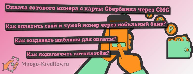 Как оплатить телефон через мобильный банк Сбербанка по СМС?