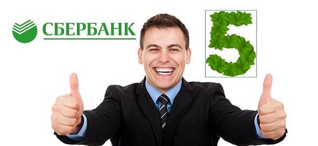 Кредитный рейтинг 5 в Сбербанке - что это значит