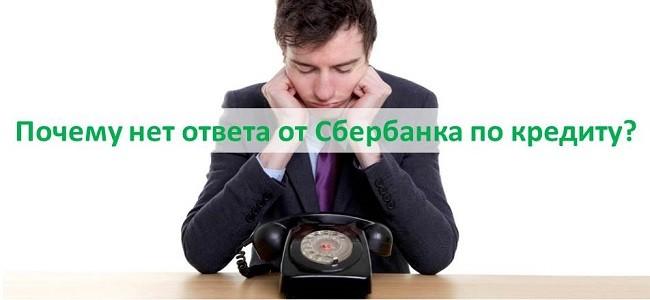 срок рассмотрения кредитной заявки в сбербанке р 5 займ
