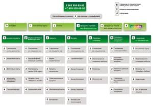 Бесплатный номер телефона службы поддержки Сбербанка, как звонить из-за границы